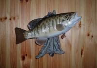 16 3/4 Inch Replica Small Mouth Bass  For Sale 325 Plus Tax
